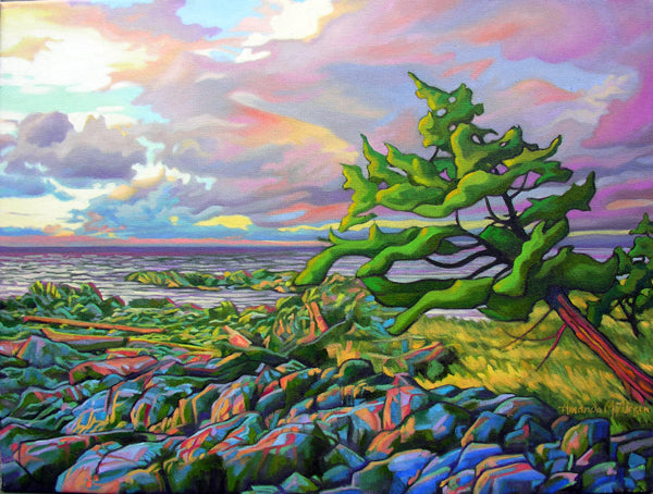 Windswept Juniper painting by Amanda Martinson available as prints