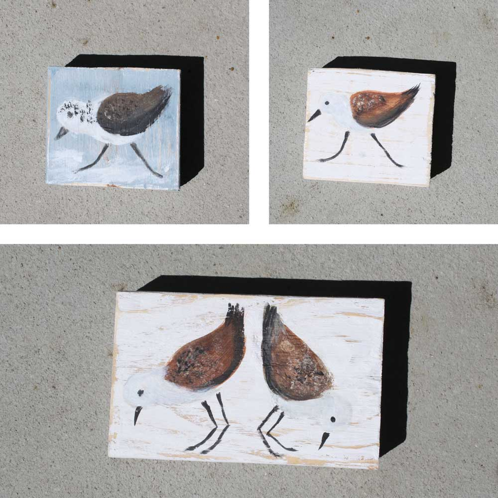 Sandpiper Bird Blocks