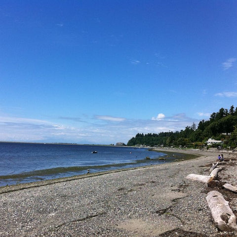 Centennial Beach, Delta - Best Places to Paddleboard Vancouver