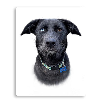 Custom Pet Portrait - My Pooch Face