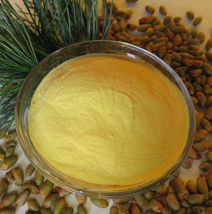 pine pollen tincture from pure powder