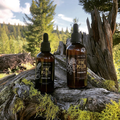 Canadian Pine Pollen Co. Tinctures