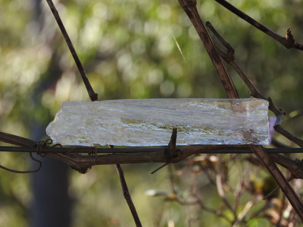 Clear Selenite Rod