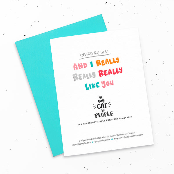 I really, really, really like you ~ Cute greeting card for new friendships and relationships by My Cat Is People