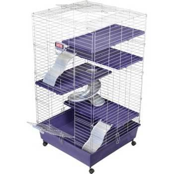 Ferret Home Multi Level 24x24