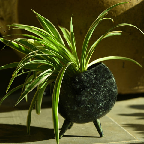 1 BHK Interiors 3 Legged Alien Table Top Metal Planter in Black & Green Space Print