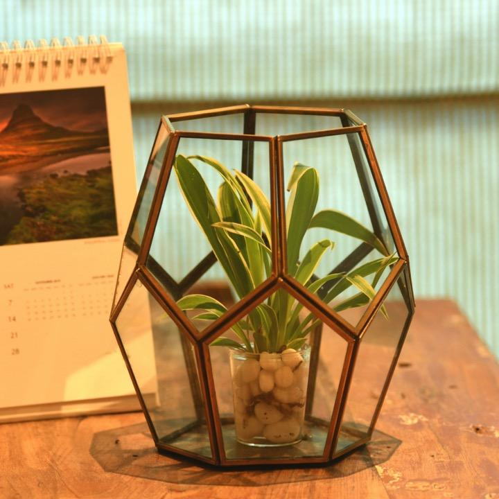 1 BHK Interiors Cobweb Terrarium Metal and Glass Planter Votive Candle Holder in Gold