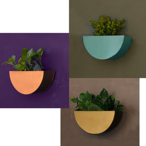 1 BHK Interiors Crescent Metal Mounted Wall Planters