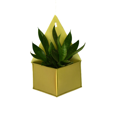 Diamond Hanging Metal Mounted Wall Planter / Letter Box in Matte Gold Finish 1 BHK Interiors