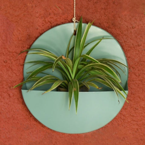 """Lunar"" Hanging Metal Mounted Wall Planter / Letter Box in Fern Green 1 BHK Interiors"