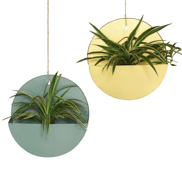 "1 BHK Interiors ""Lunar"" Hanging Metal Mounted Wall Planter / Letter Box in Fern Green"