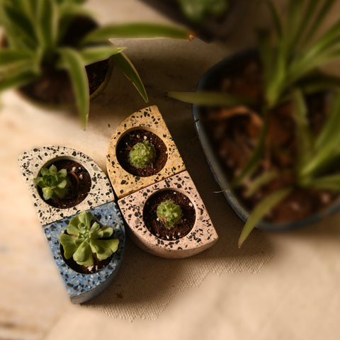 Quarter Concrete Table Top Pot / Planters with Terrazzo Print in 4 Colours 1 BHK Interiors