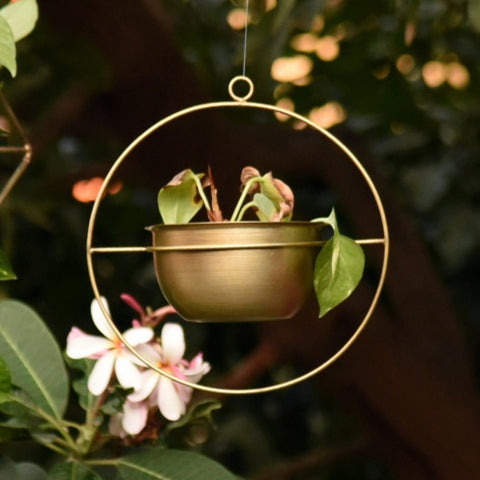 1 BHK Interiors Round Metal Hanging Planter/Bird Feeder in Gold Finish (Small)