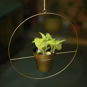 Round Metal Hanging Planter in Gold Finish (Large) 1 BHK Interiors