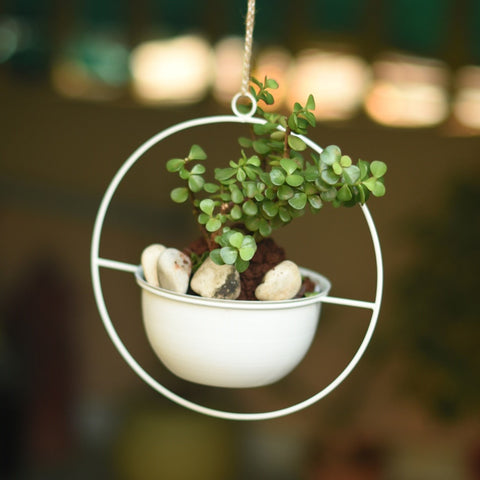 Round Metal Planter / Bird Feeder in White (Small) 1 BHK Interiors