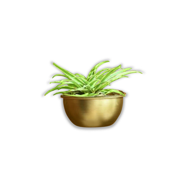 1 BHK Interiors Simple Bowl Metal Planter/Pot in Gold Finish or White