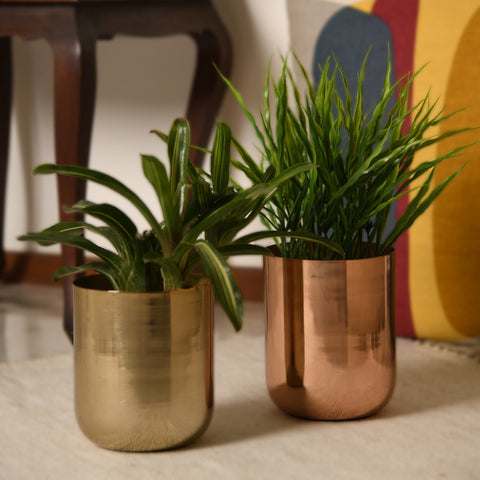 1 BHK Interiors Curved Glossy Metal Table Top Pot / Planter in Rose Gold or Gold