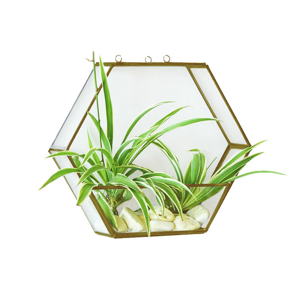 Hexagon Hanging Planter in Metal & Glass in Gold Finish