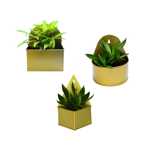 Geometric Hanging Metal Mounted Wall Planter / Letter Box in Matte Gold Finish - 3 Shapes