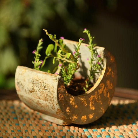 """Bright Side of the Moon"" Concrete Table Top Pot / Planter in Grey with Gold Accents 1 BHK Interiors"