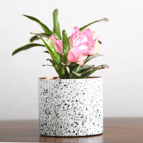 """Splatter"" Print Metal Table Top Pot / Planter in Black & White 1 BHK Interiors"