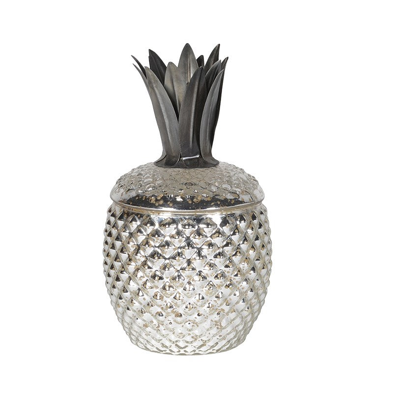 Silver Pineapple Jar
