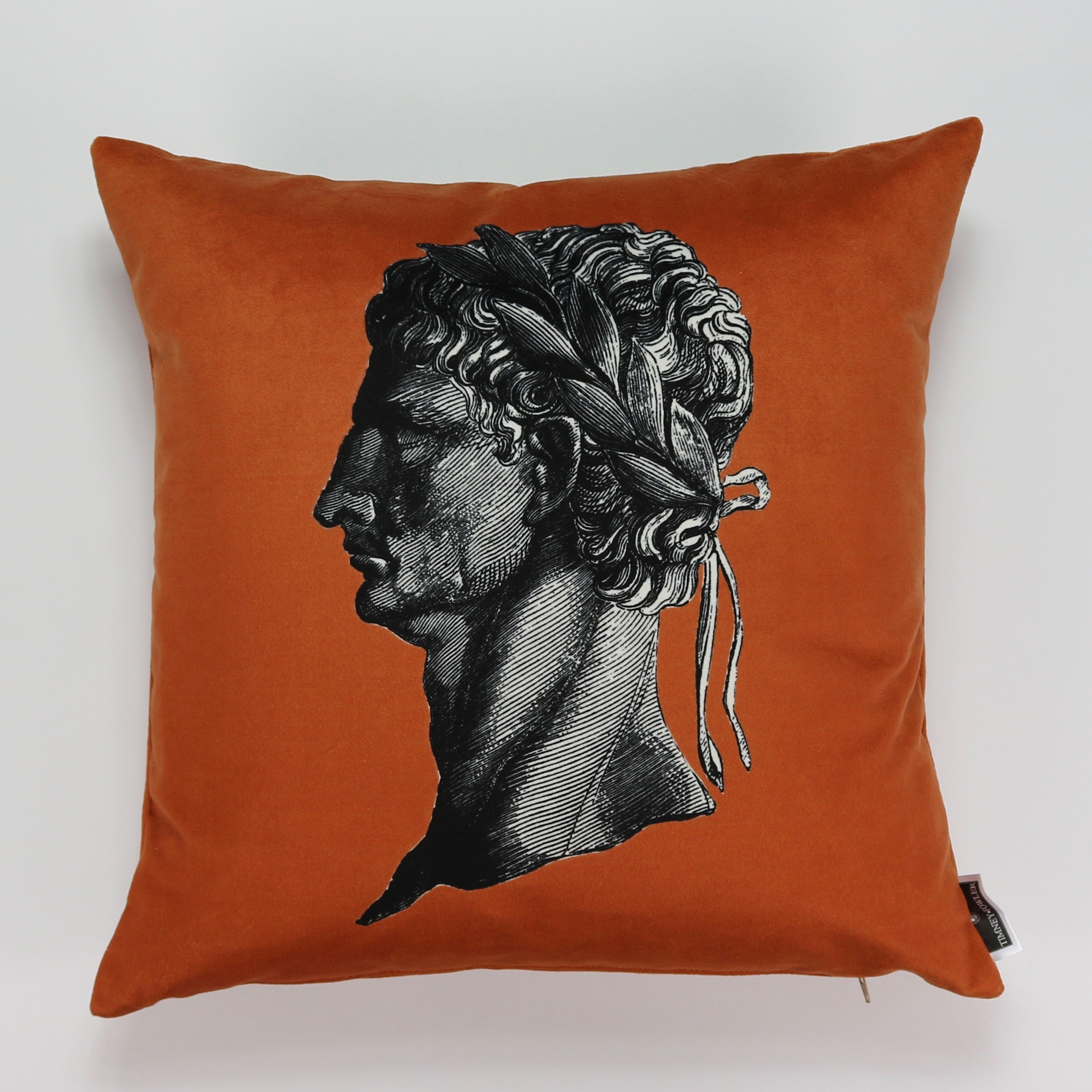 Timothy Fowler Printed Cushion (Orange)