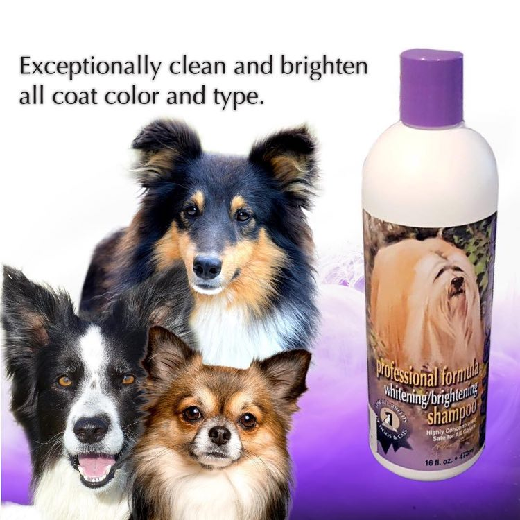 #1 All Systems Professional Pet Shampoos