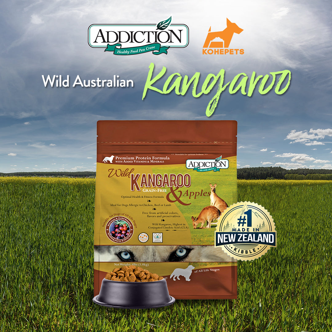Addiction Wild Kangaroo & Apples — From Lush Forests to Dog Bowls