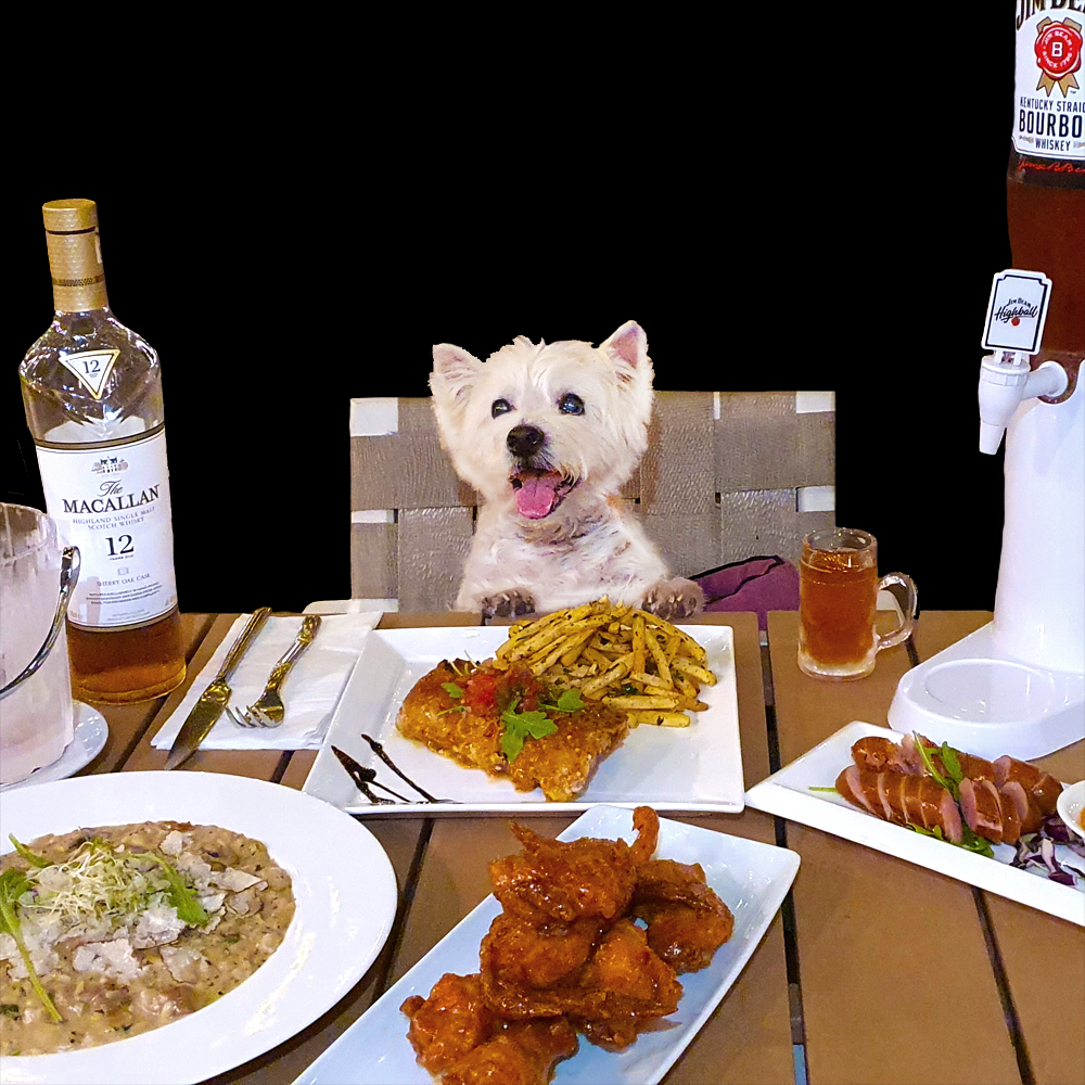 An Exclusive Kohepets Dining Experience