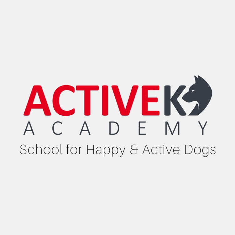 Dog Training with Active K9 Academy.