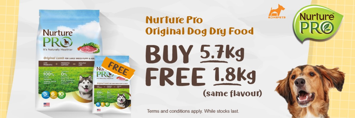 Try Nurture Pro Dog Food Now!