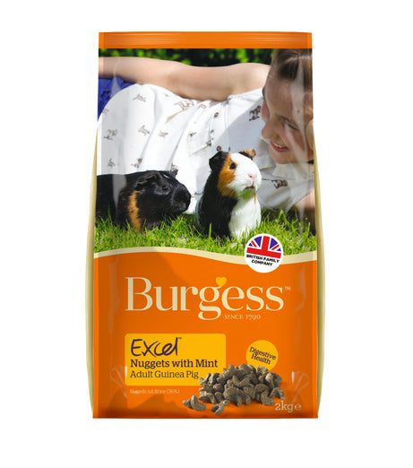 Burgess Excel Tasty Nuggets For Guinea Pigs 2kg - Kohepets