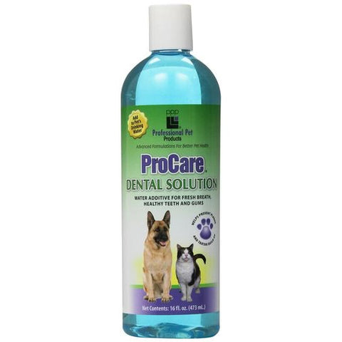 PPP Procare Dental Solution 16oz - Kohepets