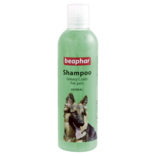 Beaphar Herbal Greasy Coat Shampoo For Dogs 250ml - Kohepets
