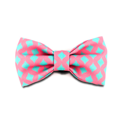 HiDREAM Profusion Bowtie for Cats & Dogs (Bobby)