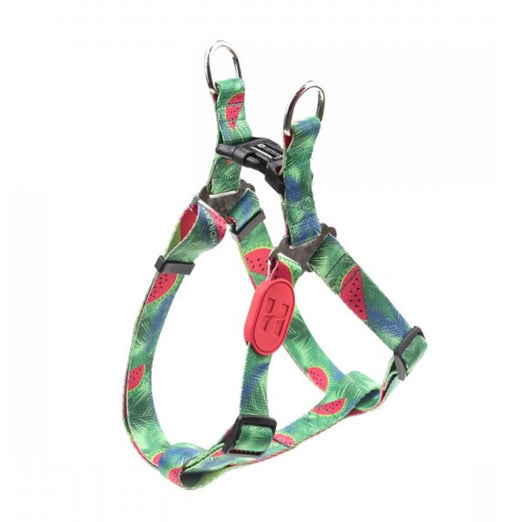 10% OFF: HiDream Profusion Dog Y-Harness (Watermelon) - Kohepets