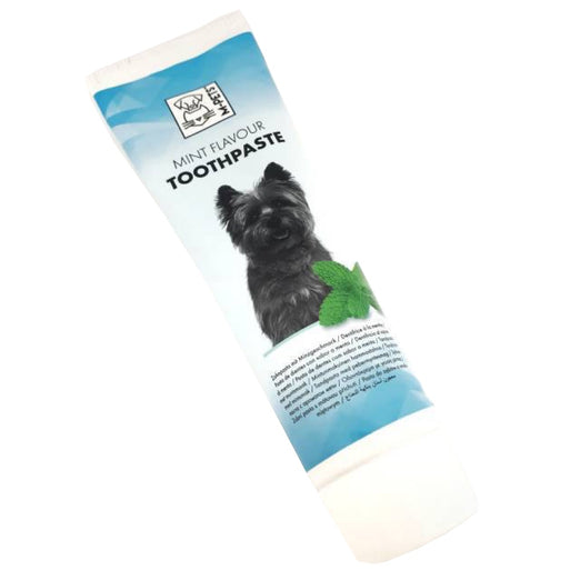 10% OFF: M-Pets Mint Flavour Toothpaste for Cats & Dogs 100g - Kohepets