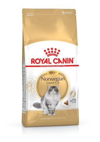 Royal Canin Norwegian Forest Cat Adult 2kg - Kohepets