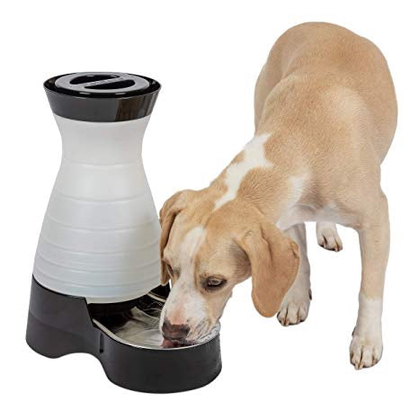 Petsafe Water Station With Stainless Steel Bowl For Cats & Dogs