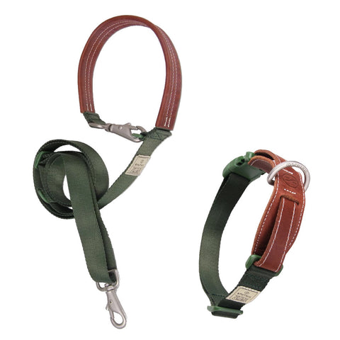 $3 OFF: Sputnik Nylon Dog Collar + Multifunctional Leash Set (Green)