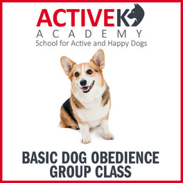Active K9 Academy Basic Dog Obedience Group Class