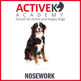 Active K9 Academy Dog Nosework Training Group Class
