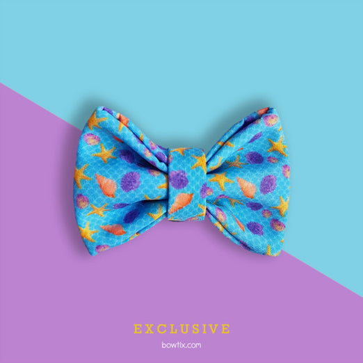 Bowtix Handmade Cat Collar With Removable Bowtie - Sea & Shell