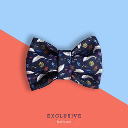 Bowtix Handmade Cat Collar With Removable Bowtie - Seas The Day