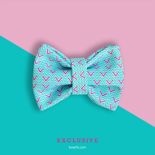 Bowtix Handmade Cat Collar With Removable Bowtie - Zig Zagging