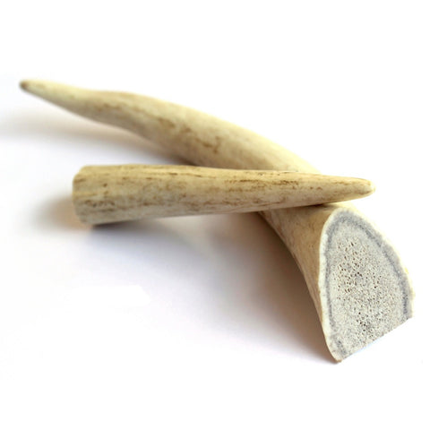 Chew Time Whole Antler Dog Chew - Kohepets
