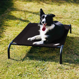 Coolaroo Elevated Knitted Fabric Pet Bed - Black