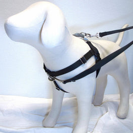 2 Hounds Design Freedom No-Pull Dog Harness - Black/Silver