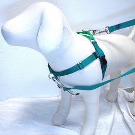 2 Hounds Design Freedom No-Pull Dog Harness - Neon Green/Kelly Green